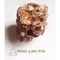 Jaspe à ocelles brut du Pérou